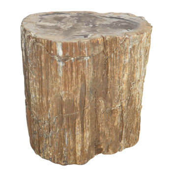 Petrified Wood Decorative Stool