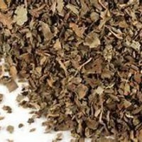 Herbs: Cypress branch ~ 1 oz small pieces~ Ravenz Roost Herbs with Special Info on Labels