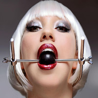 Adjustable Stainless Steel Ball Gag Head Harness