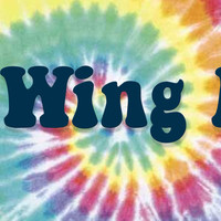 Right Wing Hippie Bumper Sticker