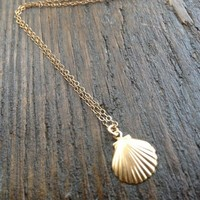 Tiny Seashell Necklace