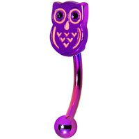 Purple Anodized Titanium Owl Eyebrow Ring | Body Candy Body Jewelry