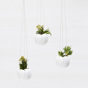 Tiny Porcelain Hanging Air Plant Planter