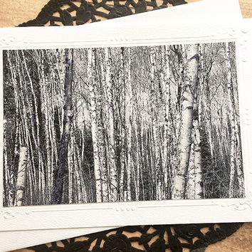 "Grove of Birch Trees Fine Art Photography Card, Glitter Accents, Black and White, Nature, Outdoors, Note Card, Embossed, Birthday - 7"" x 5"""
