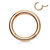 BodyJ4You Segment Ring Earring Lip Nose Septum Hinged Seamless Stainless Steel Rose Gold 16G Body Jewelry