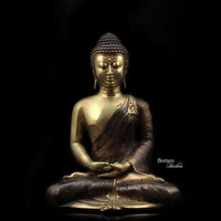 "Meditating Buddha 8.6""Brass Buddha In Dhyana Mudra Hand Position,Enlightened Serene Tranquil Calm Peaceful Sculpture Home Decor And Living"