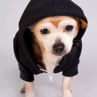 f997 - Flex Fleece Dog Zip Hoodie