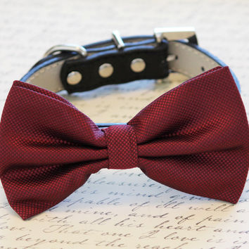 Marsala Dog Bow Tie, Marsala color of the year, Marsala wedding