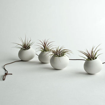 Garland  --  5 Hanging Air Planters - Porcelain Garland