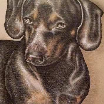 Pet memorial, loss of pet, Custom Pet Portrait in color of ONE PET, Pet Memorial, Hand Drawn Pencil Portrait from your Photo, Pet Drawing