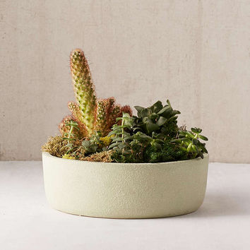 """12"""" Succulent Planter - Urban Outfitters"""