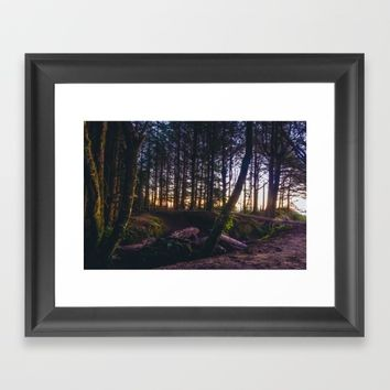 Wooded Tofino Framed Art Print by Mixed Imagery
