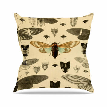 "Suzanne Carter ""Vintage Cicada"" Bugs Pattern Throw Pillow"