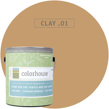 Paint by Colorhouse CLAY .01