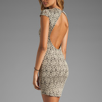 DV by Dolce Vita Betsey Stretch Rose Lace Dress in Nude/Black