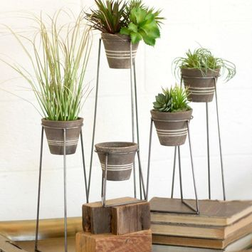 Clay Pots With Wire Bases (Set of 5)