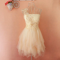 Embroidery lace tutu dress   JCADD