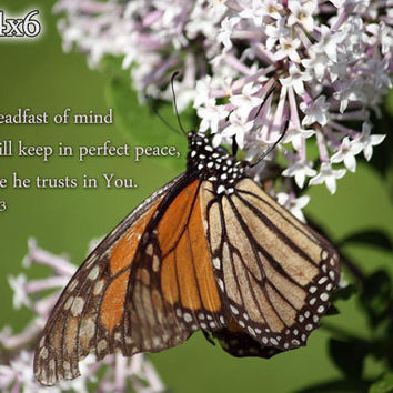 Bible Verse Art - Isaiah 26:3 - Monarch Butterfly and Lilac Photo - Scripture Print - Scripture Mounted Print