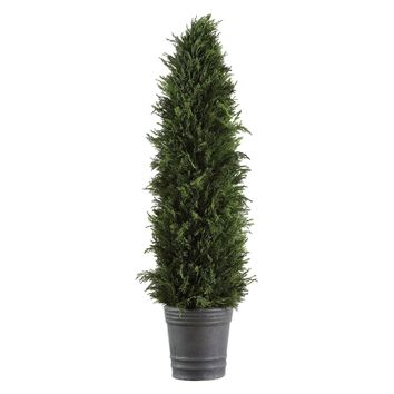 Preserved Cypress Cone Topiary by Uttermost