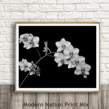 Orchid Print, Black and White,Flower Photography Wall Art, Floral Print, Botanical Decor, Instant Printable Download, Large Poster Art