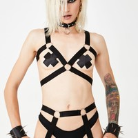 Divide N' Conquer Harness Set