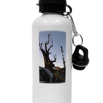 Colorado Mountain Scenery Aluminum 600ml Water Bottle by TooLoud