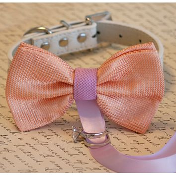 Peach and Lavender wedding accessory, Dog ring bearer, Peach Dog Bow Tie