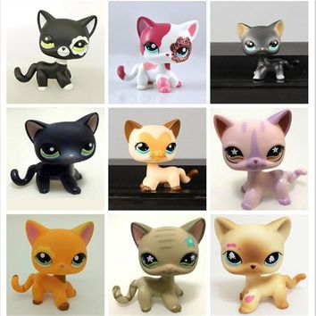 lps Collections CAT toys Short Hair Kitty Rare Old Styles White Pink Tabby Black pink kitten cute Animal Pet Shop Toys