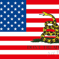 3X5FT American Flag with Gadsden Don't Tread On Me flag Polyester high quality Flags popular custom flag 100D Digital Print