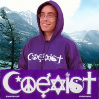 Coexist Purple Hoodie Hooded Sweatshirt Small Peace Among Religious Symbols