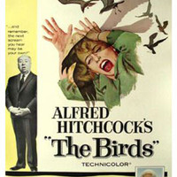 The Birds Hitchcock Vintage Movie Poster