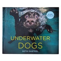 Underwater Dogs | Gifts for Him | Gifts | Z Gallerie