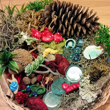 Fairy Garden Kit, Fairy Garden Accessories, Fairy Kit, Fairy House Kit, Miniature Garden Supplies, Terrarium Kit, Miniature Garden Items