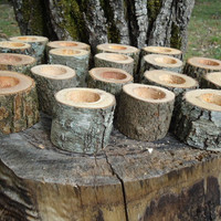 "24 qty 2"" log candle holders, wood candle holders sticks for votive candles, weddings, cabins, decoration, decor, natural tree branch,"