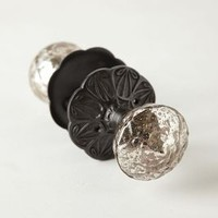 Glass Prisms Doorknob by Anthropologie Silver One Size Knobs