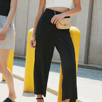 Silence + Noise Sasha Accordion Pleat Culotte Pant | Urban Outfitters