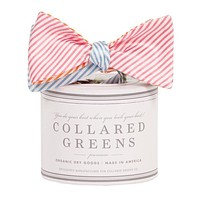 The Four Panel Stripes Bow in Pink/Green/Blue/Orange by Collared Greens