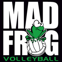 madfrog volleyball - Google Search