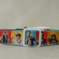 Dog Collar * Glee Inspired * Adjustable Buckle Dog Collar OR Martingale Collar