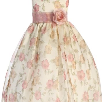 (Sale) Girls Size 5/6 Rose Vintage Floral Print Organza Overlay Dress