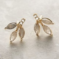 Botany Posts by Anthropologie in Gold Size: One Size Earrings