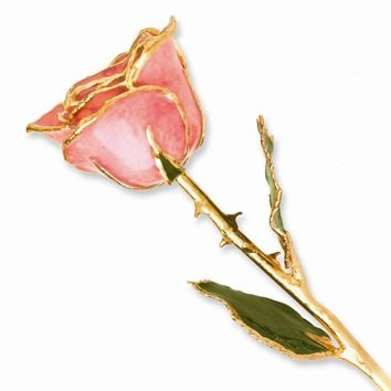 Lacquer Dipped Gold Trim Pink Rose