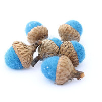 6 Wool Felted Acorns in a Beautiful Robin Eggs by Stitchcrafts