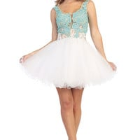 Sheer Lace Top Short Tulle Homecoming Dress