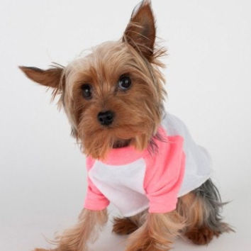 Poly-Cotton 3/4 Sleeve Dog Raglan Tee - Be Kind To Animals OR My Mommy Will Kill You!