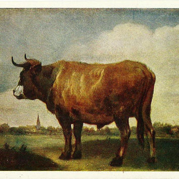 Bull, Animal, Artist P. Potter, Vintage Russian Postcard, Art, Izogiz, 1959
