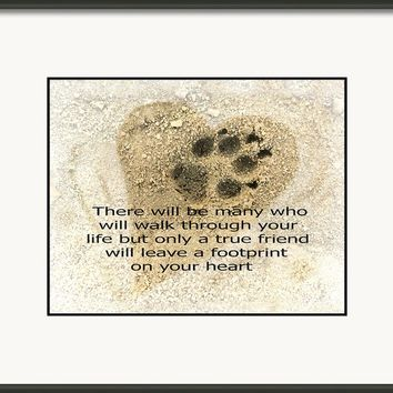 Dog Paw Print - Photo Art Framed Print