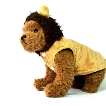 African Lion Dog Costume