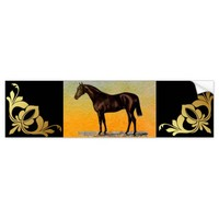 Brown Horse Bumper Sticker