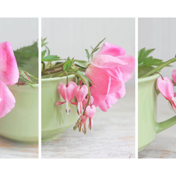 Set of 3 Pink Flower Photography Prints - Bleeding Hearts Roses